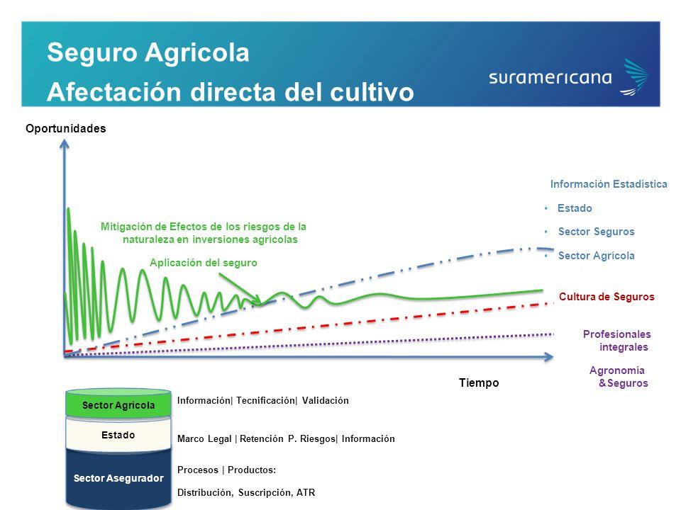 Información Estadística Profesionales integrales