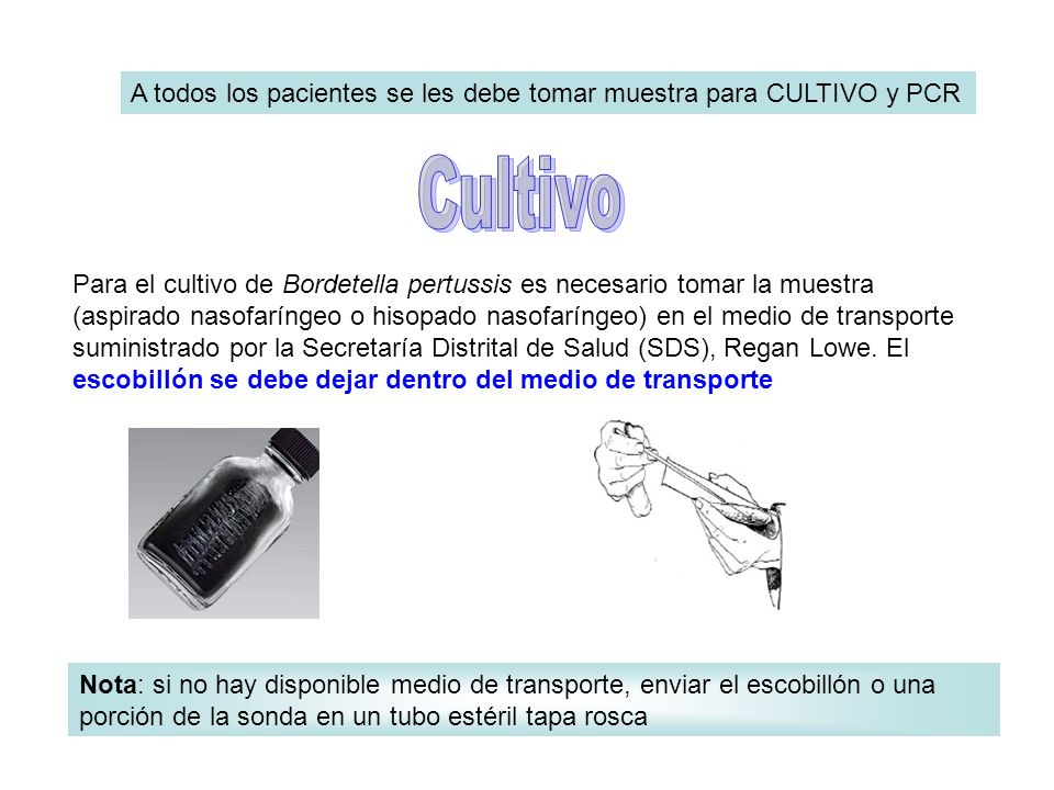 A todos los pacientes se les debe tomar muestra para CULTIVO y PCR