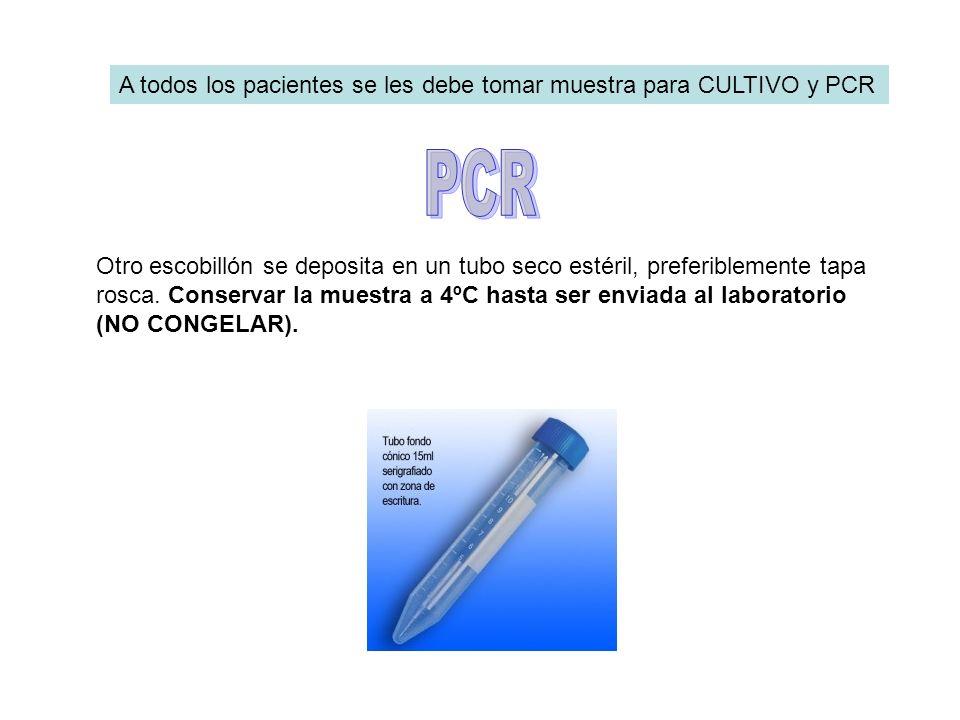 PCR A todos los pacientes se les debe tomar muestra para CULTIVO y PCR