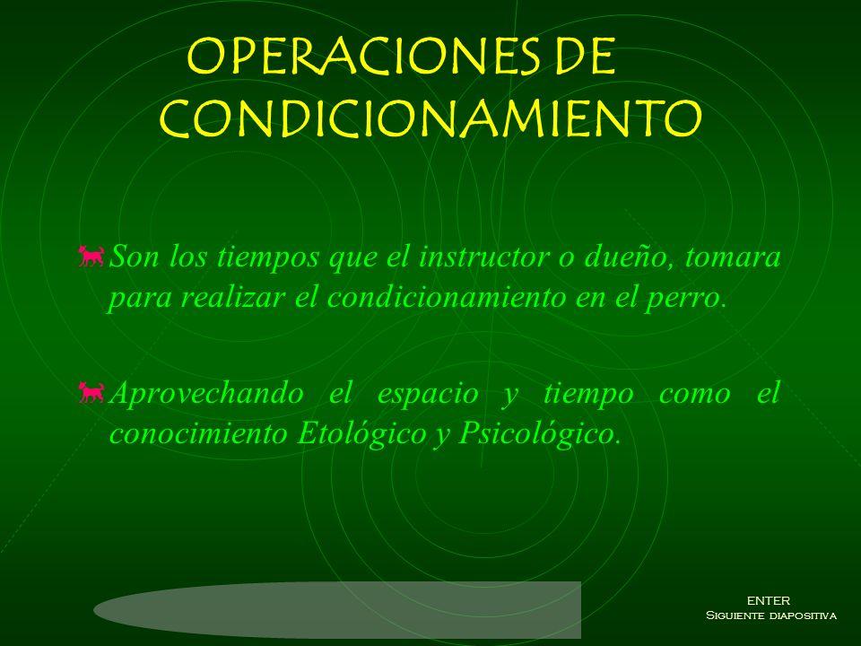 OPERACIONES DE CONDICIONAMIENTO
