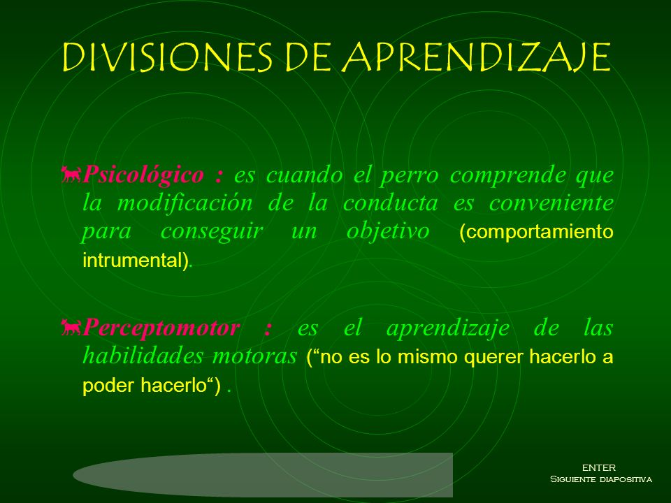 DIVISIONES DE APRENDIZAJE
