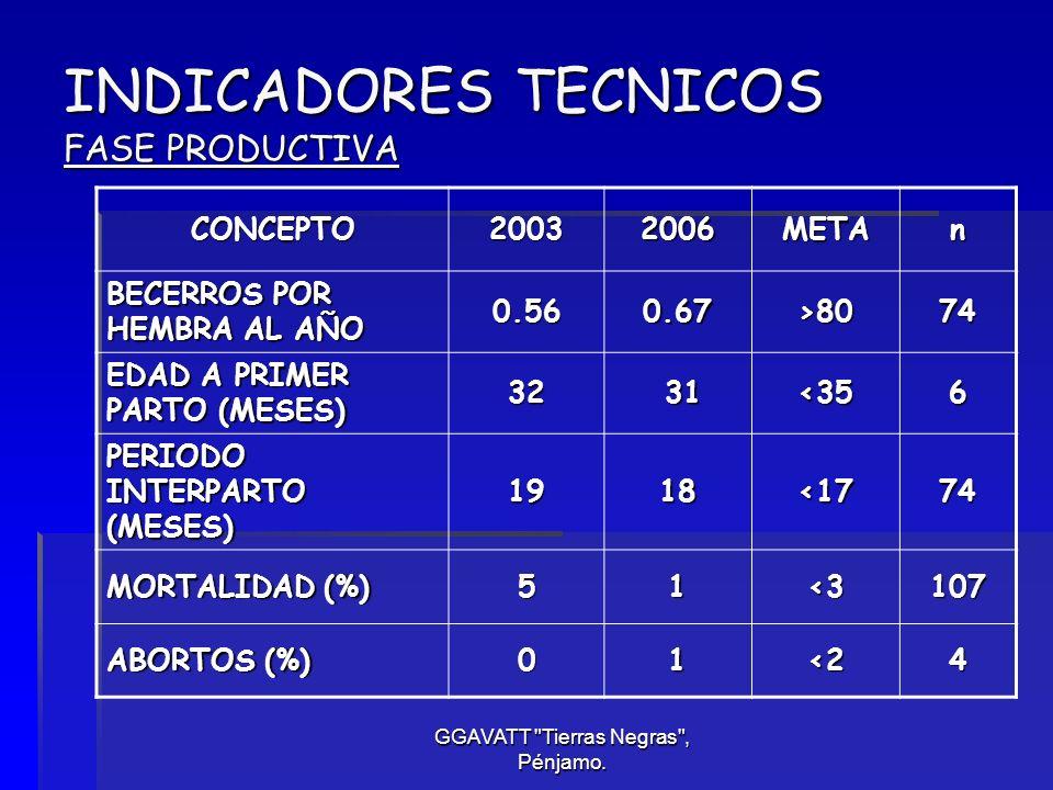 INDICADORES TECNICOS FASE PRODUCTIVA
