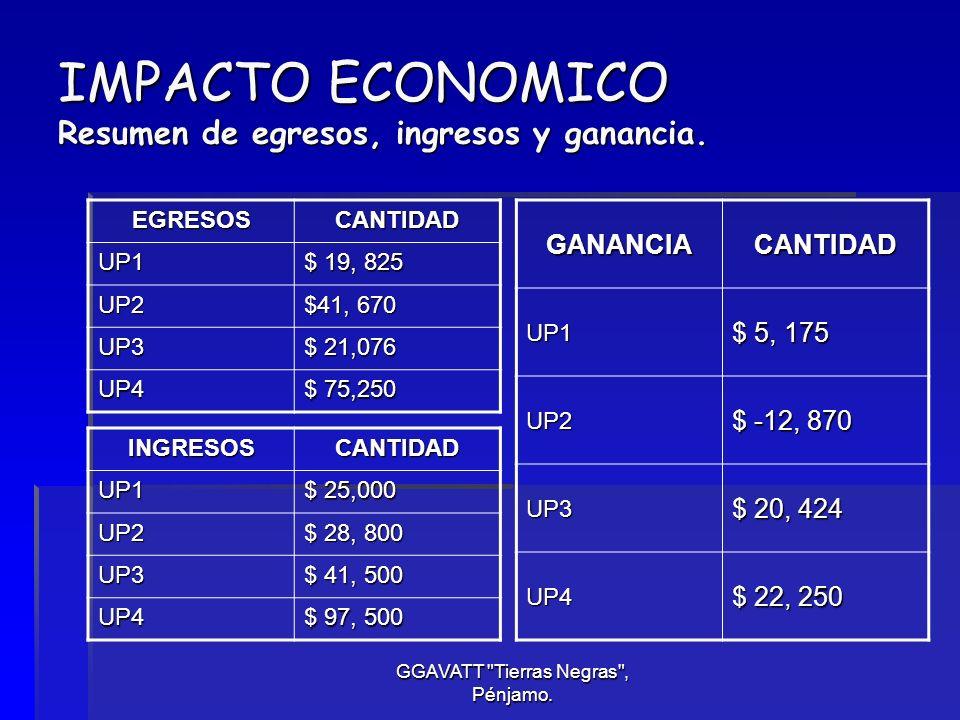 IMPACTO ECONOMICO Resumen de egresos, ingresos y ganancia.