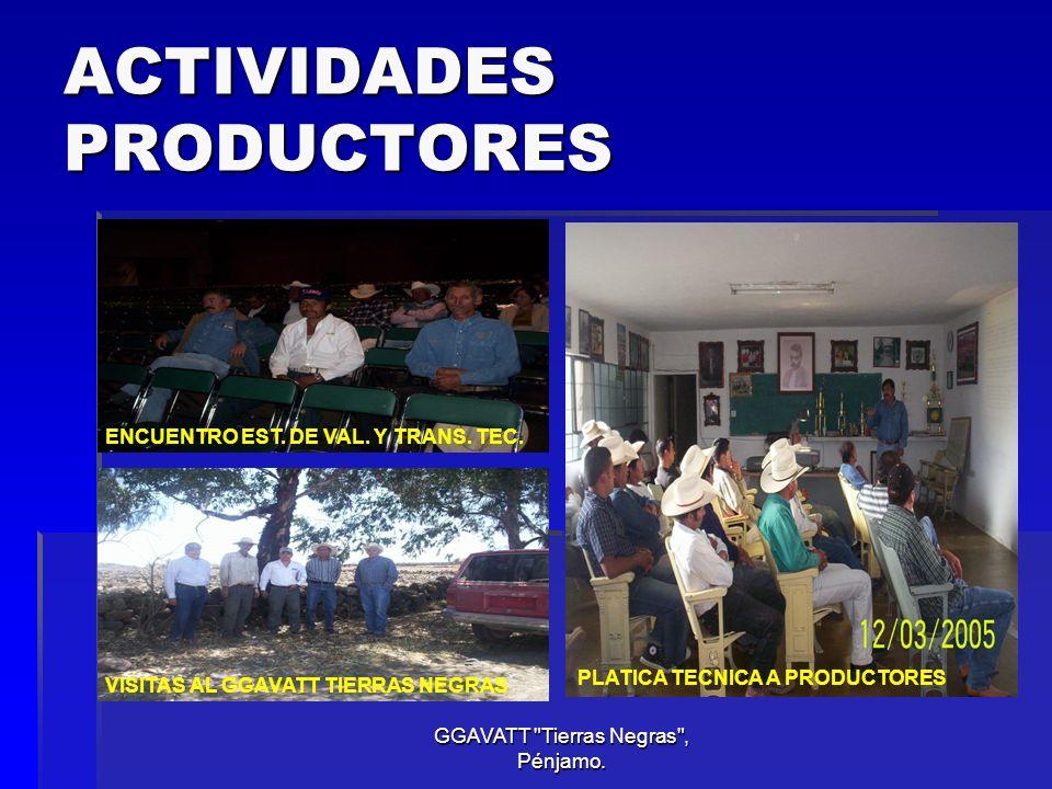 ACTIVIDADES PRODUCTORES