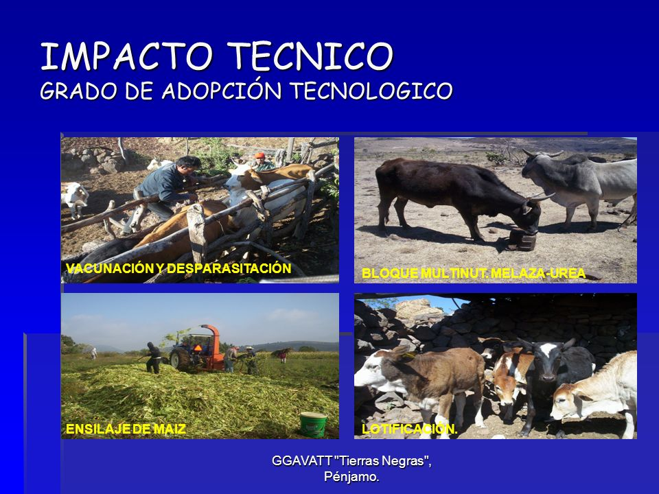 IMPACTO TECNICO GRADO DE ADOPCIÓN TECNOLOGICO