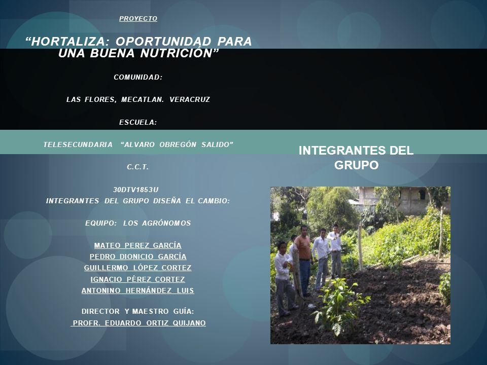 HORTALIZA: OPORTUNIDAD PARA UNA BUENA NUTRICIÓN
