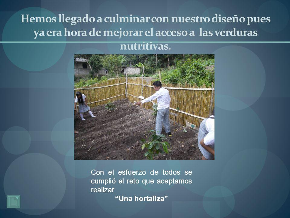 Hemos llegado a culminar con nuestro diseño pues ya era hora de mejorar el acceso a las verduras nutritivas.