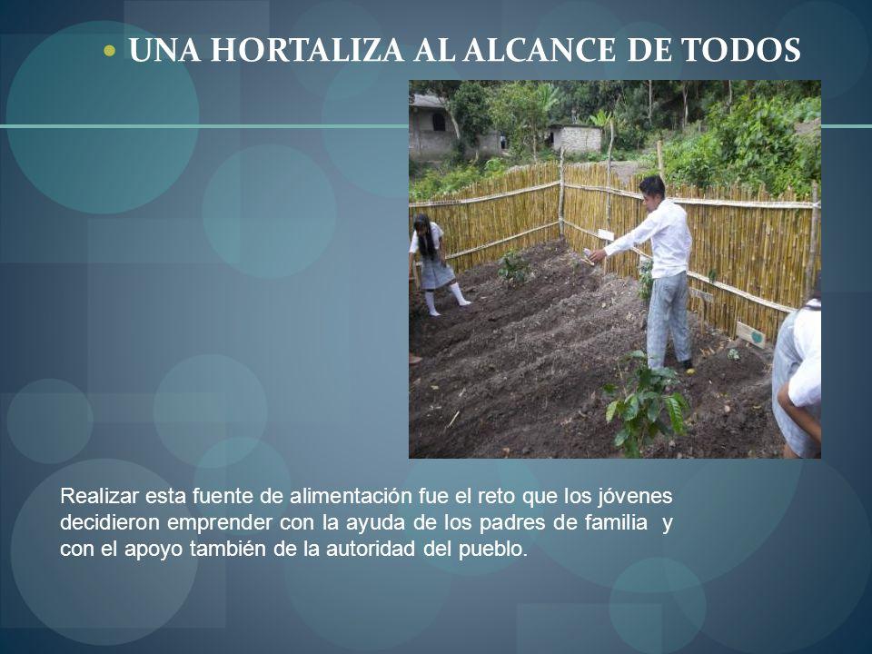 UNA HORTALIZA AL ALCANCE DE TODOS
