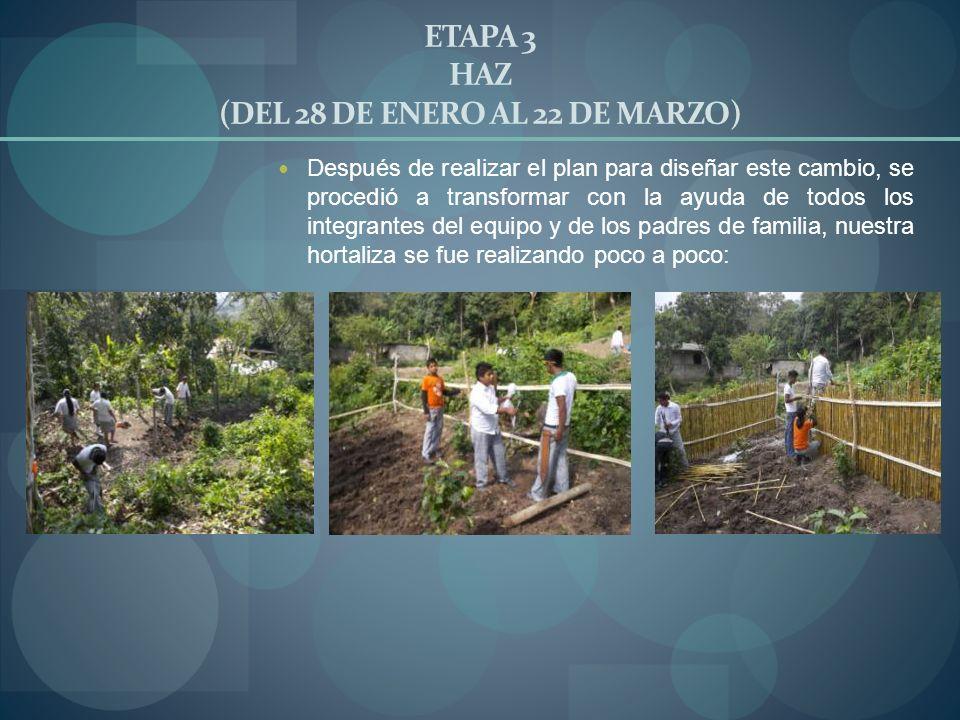 ETAPA 3 HAZ (DEL 28 DE ENERO AL 22 DE MARZO)