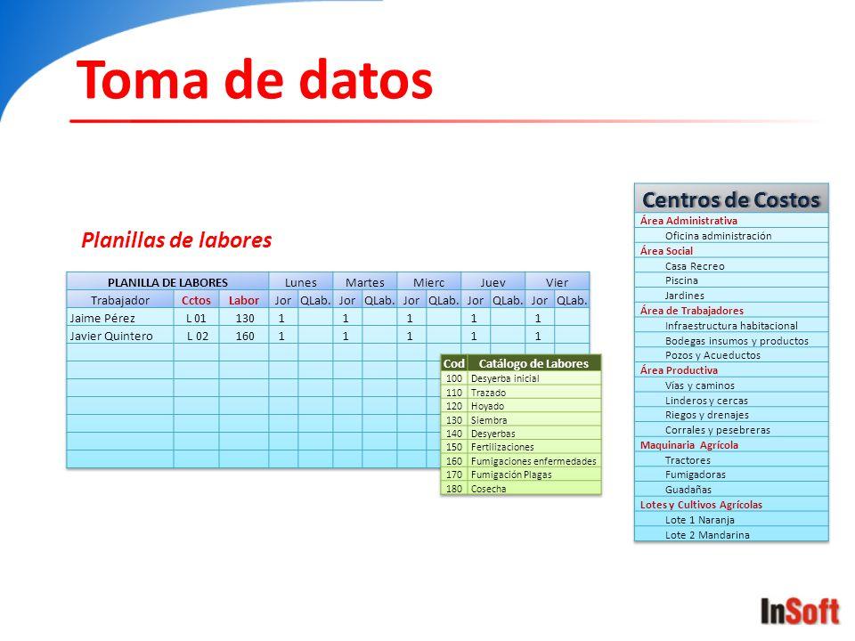 Toma de datos Centros de Costos Planillas de labores