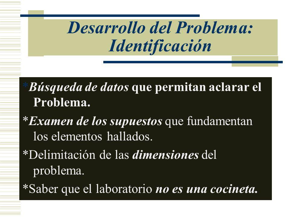 Desarrollo del Problema: Identificación