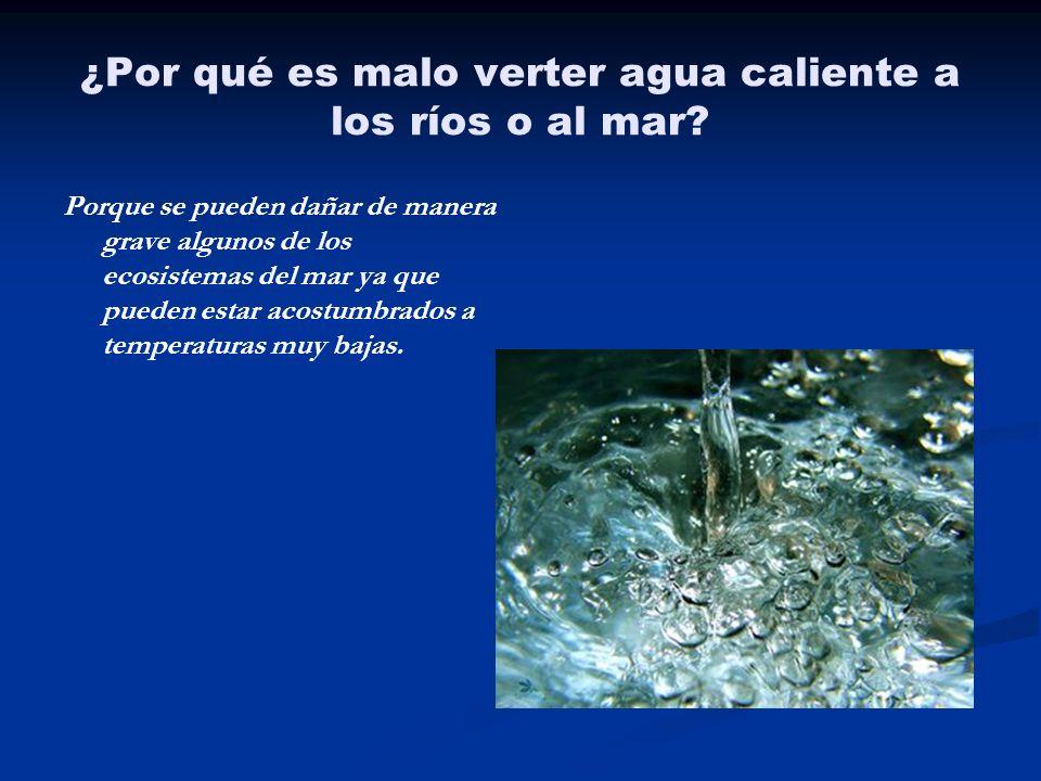 ¿Por qué es malo verter agua caliente a los ríos o al mar