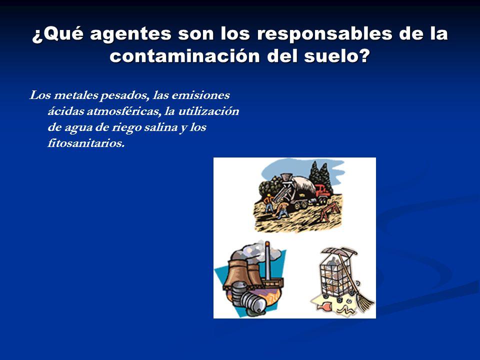 ¿Qué agentes son los responsables de la contaminación del suelo