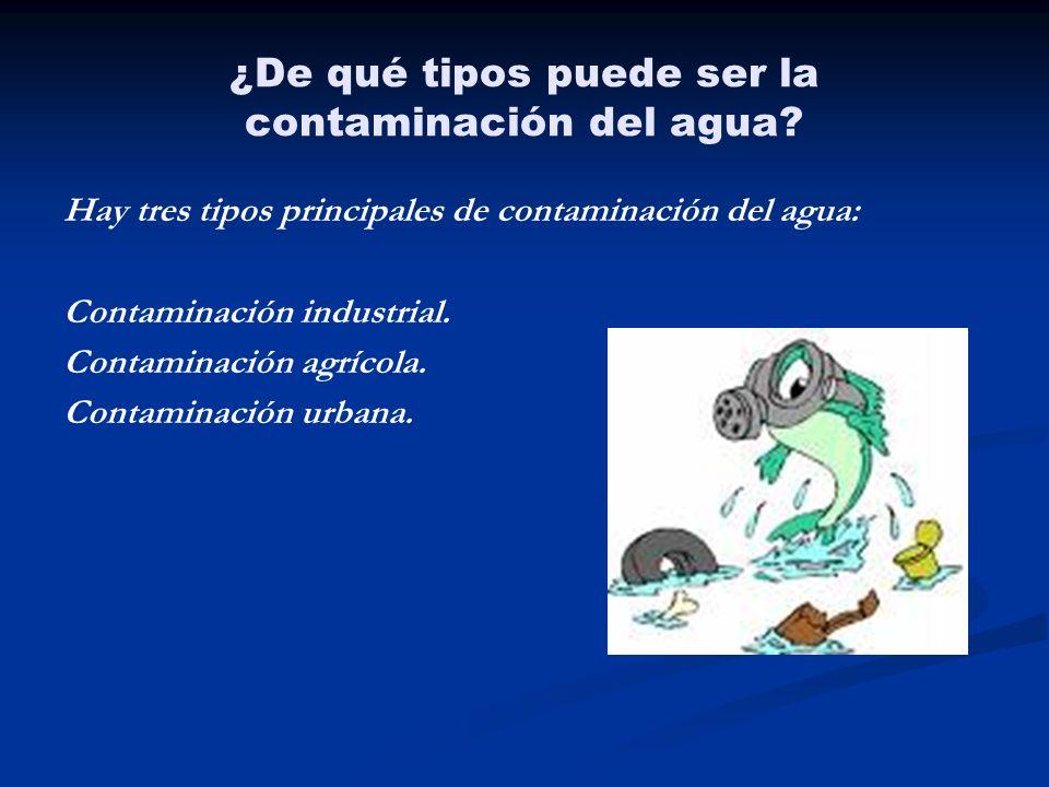 ¿De qué tipos puede ser la contaminación del agua