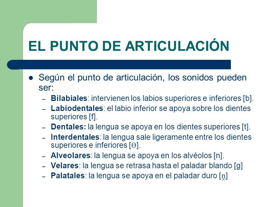 EL PUNTO DE ARTICULACIÓN