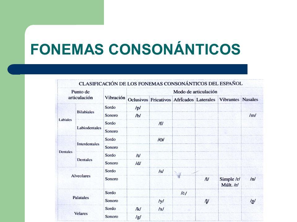 FONEMAS CONSONÁNTICOS