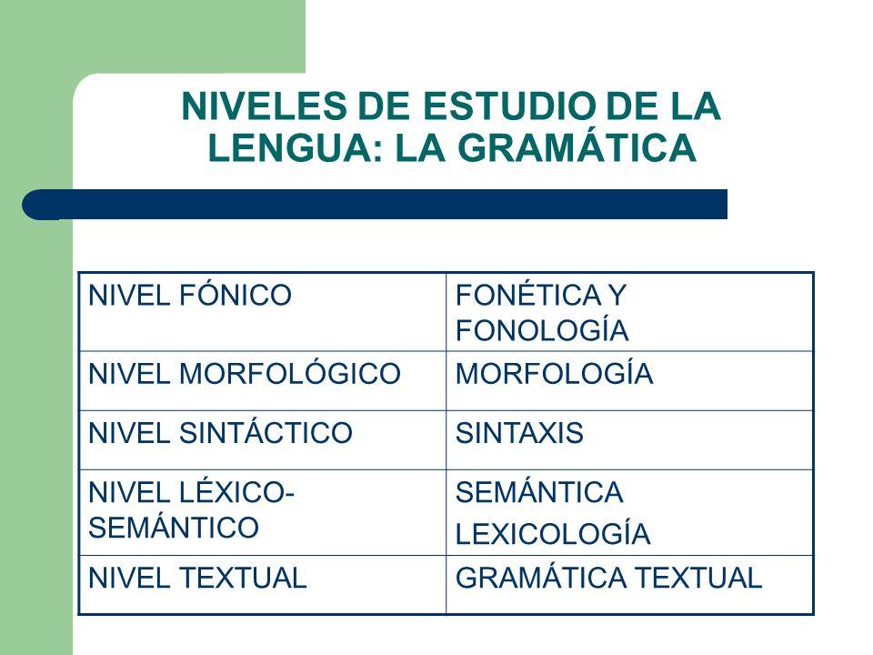 NIVELES DE ESTUDIO DE LA LENGUA: LA GRAMÁTICA