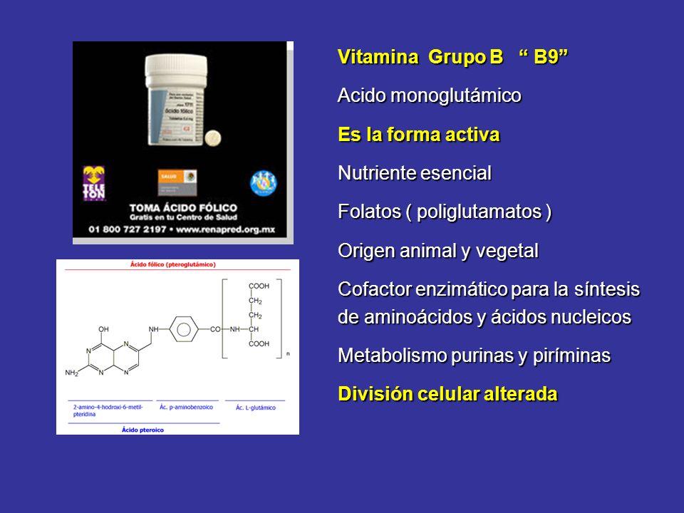 Vitamina Grupo B B9 Acido monoglutámico. Es la forma activa. Nutriente esencial. Folatos ( poliglutamatos )