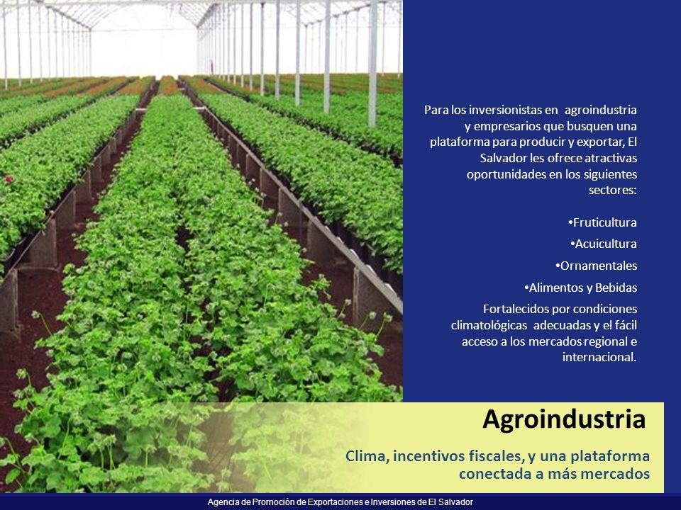Para los inversionistas en agroindustria y empresarios que busquen una plataforma para producir y exportar, El Salvador les ofrece atractivas oportunidades en los siguientes sectores: