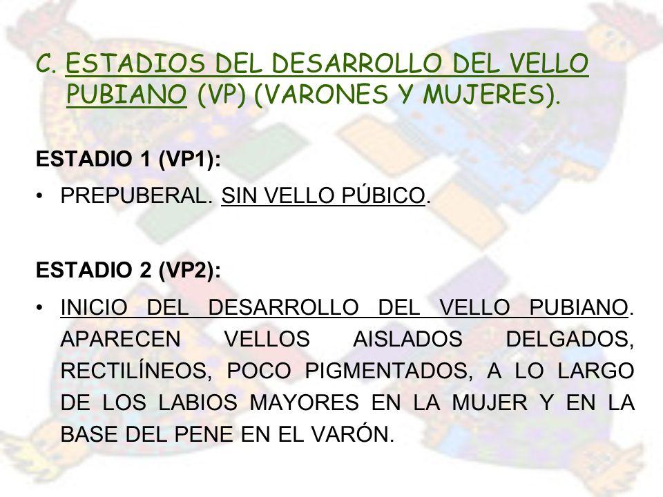 C. ESTADIOS DEL DESARROLLO DEL VELLO PUBIANO (VP) (VARONES Y MUJERES).