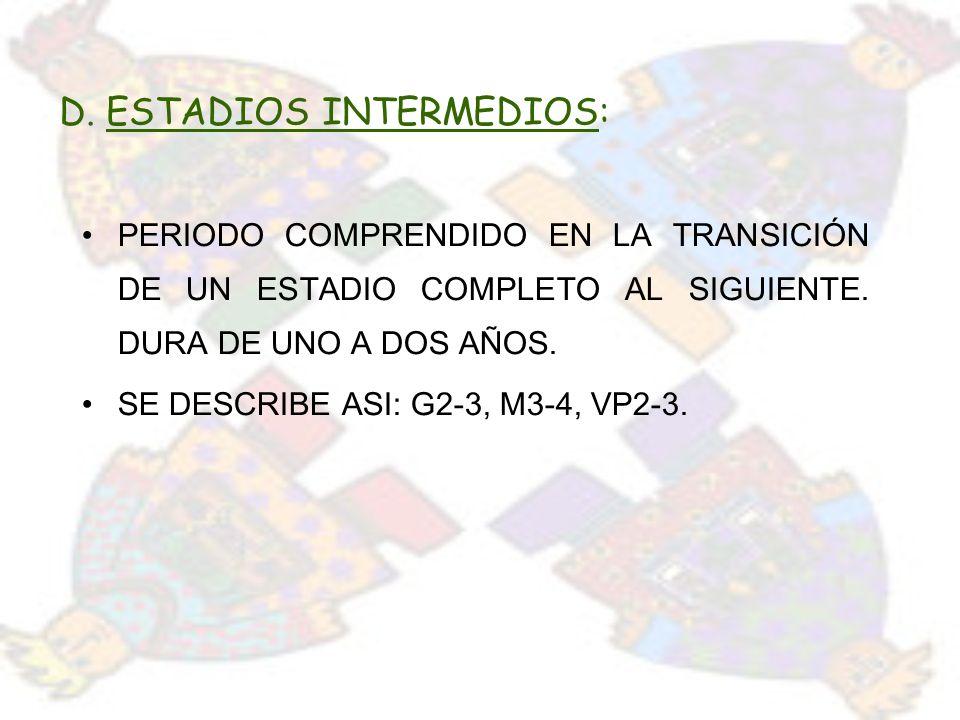 D. ESTADIOS INTERMEDIOS:
