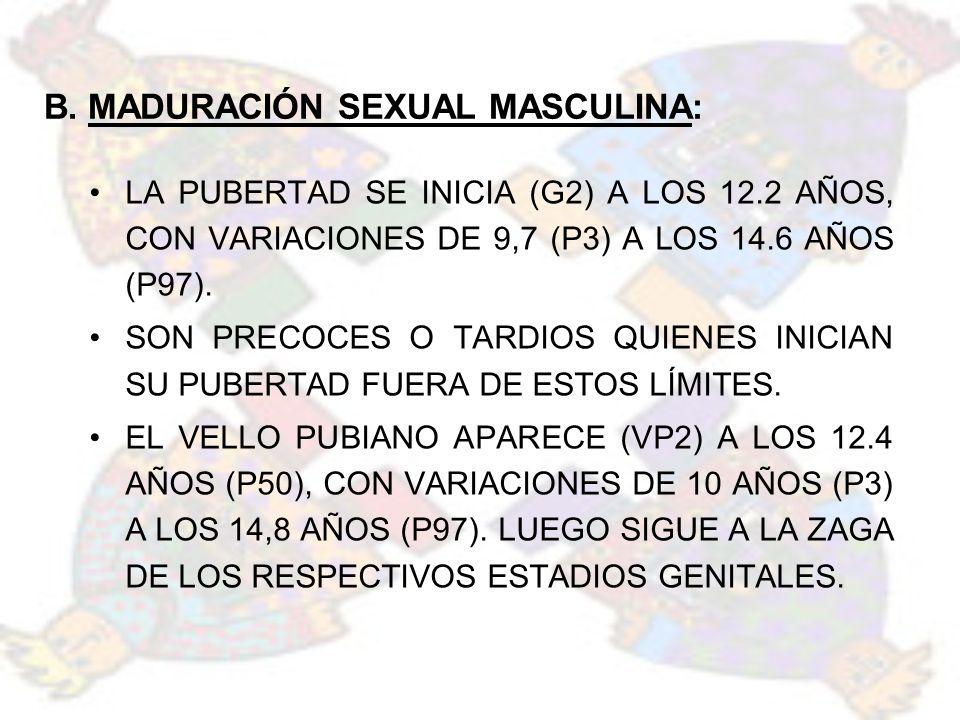 B. MADURACIÓN SEXUAL MASCULINA: