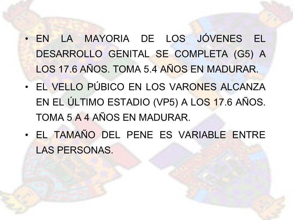EN LA MAYORIA DE LOS JÓVENES EL DESARROLLO GENITAL SE COMPLETA (G5) A LOS 17.6 AÑOS. TOMA 5.4 AÑOS EN MADURAR.