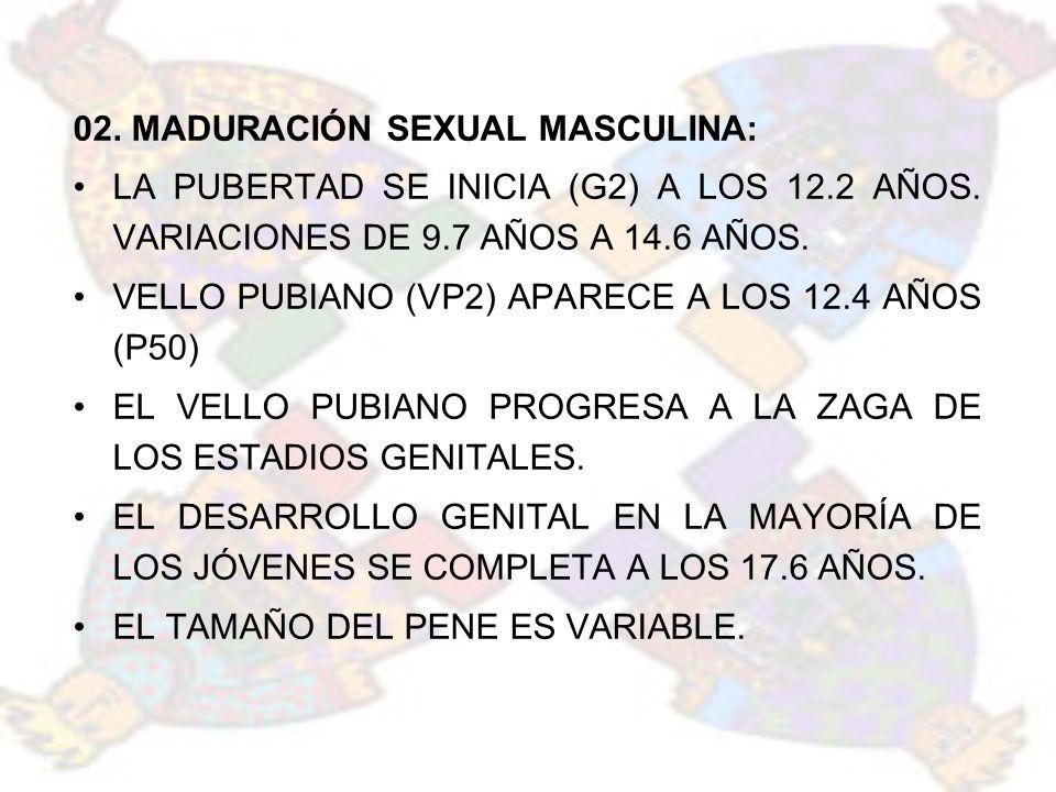 02. MADURACIÓN SEXUAL MASCULINA: