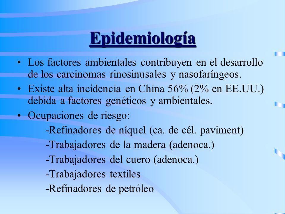 Epidemiología Los factores ambientales contribuyen en el desarrollo de los carcinomas rinosinusales y nasofaríngeos.