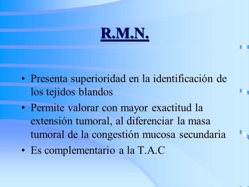 R.M.N. Presenta superioridad en la identificación de los tejidos blandos.