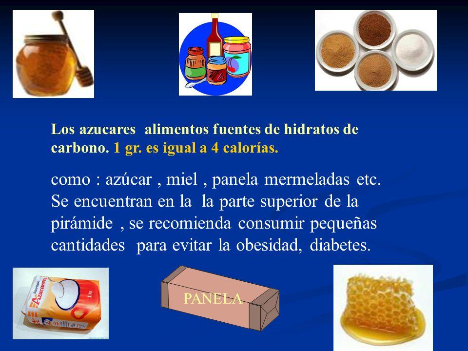 Los azucares alimentos fuentes de hidratos de carbono. 1 gr