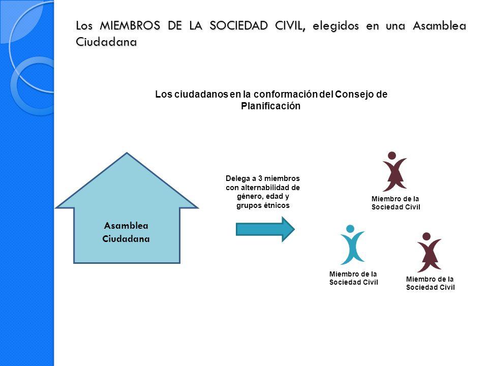 Los MIEMBROS DE LA SOCIEDAD CIVIL, elegidos en una Asamblea Ciudadana
