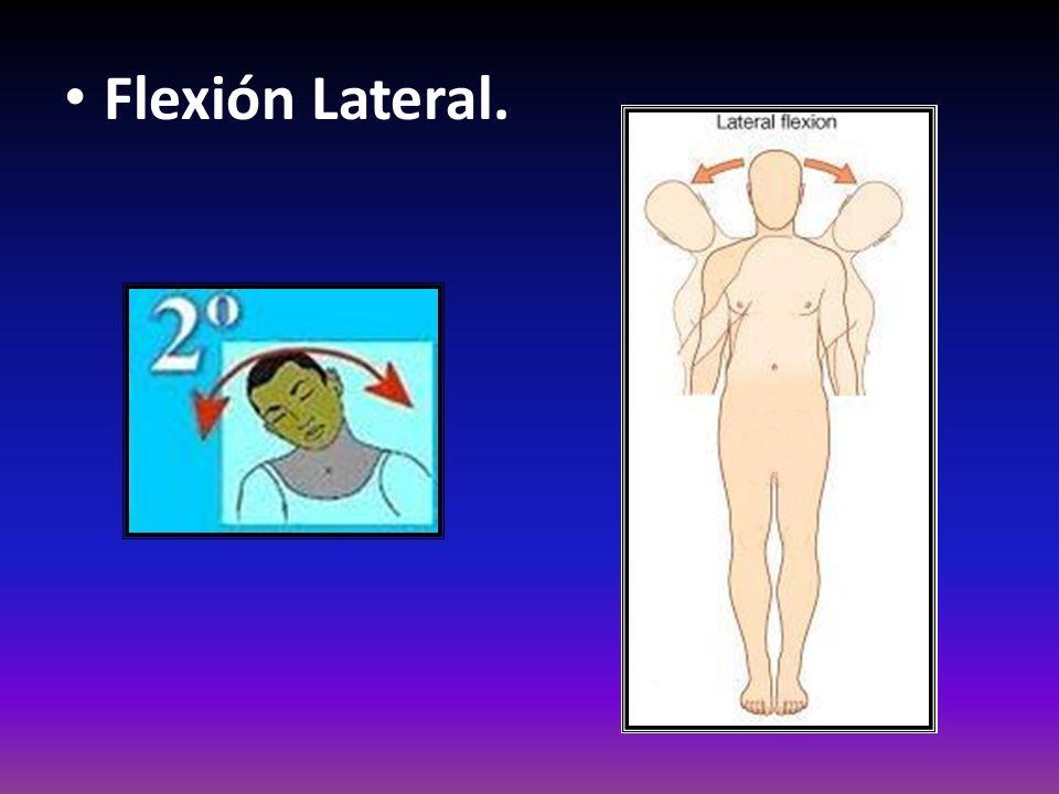 Flexión Lateral.