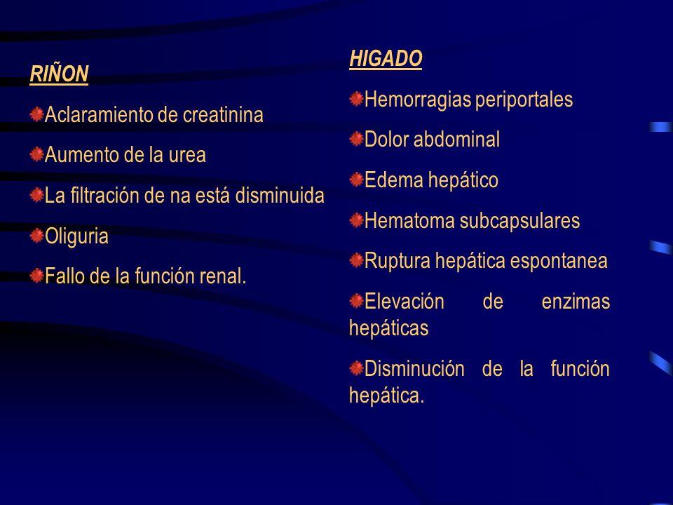 HIGADO Hemorragias periportales. Dolor abdominal. Edema hepático. Hematoma subcapsulares. Ruptura hepática espontanea.