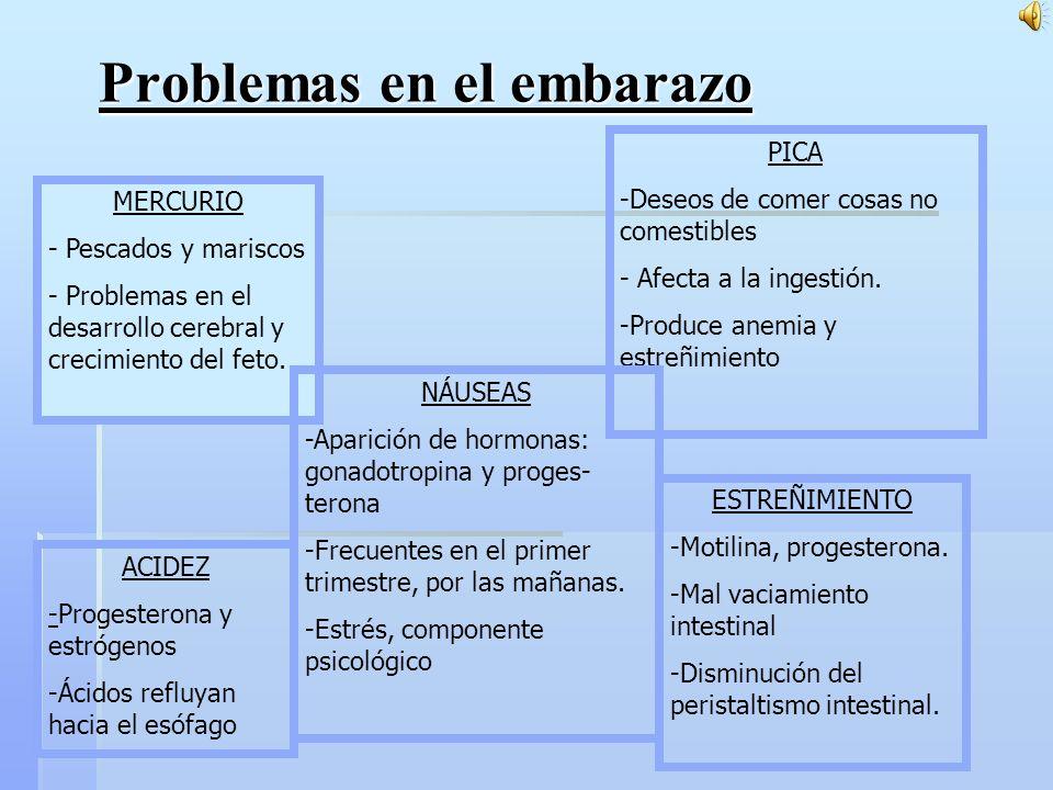 Problemas en el embarazo