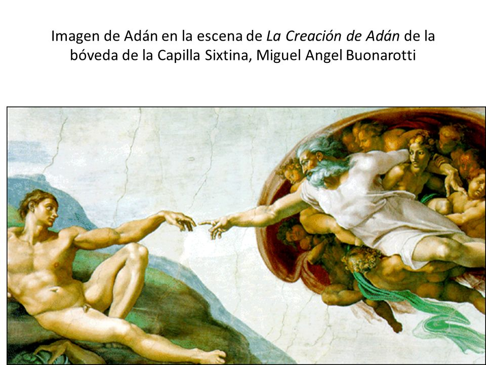 Imagen de Adán en la escena de La Creación de Adán de la bóveda de la Capilla Sixtina, Miguel Angel Buonarotti