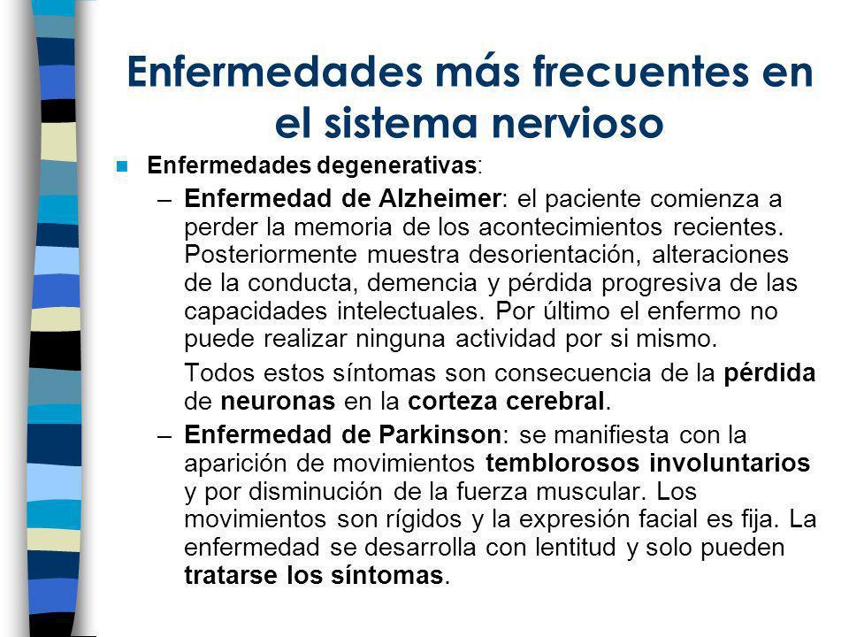 Enfermedades más frecuentes en el sistema nervioso