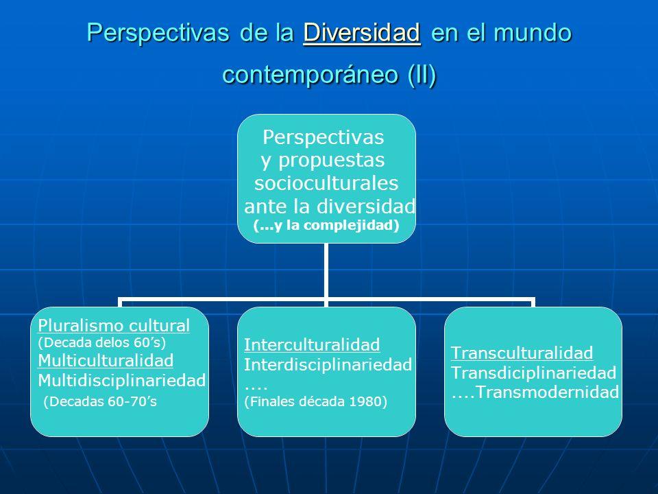 Perspectivas de la Diversidad en el mundo contemporáneo (II)