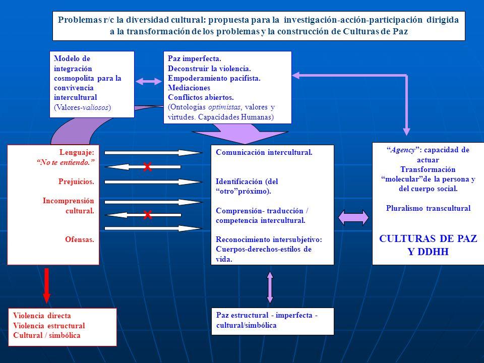 Problemas r/c la diversidad cultural: propuesta para la investigación-acción-participación dirigida a la transformación de los problemas y la construcción de Culturas de Paz