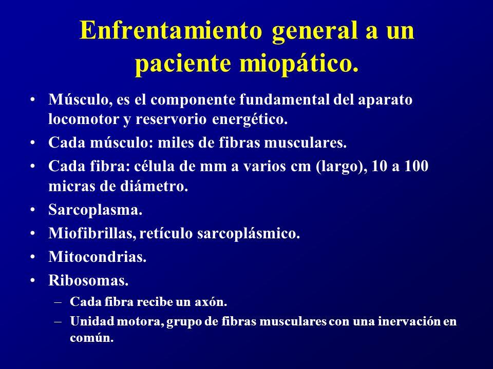 Enfrentamiento general a un paciente miopático.