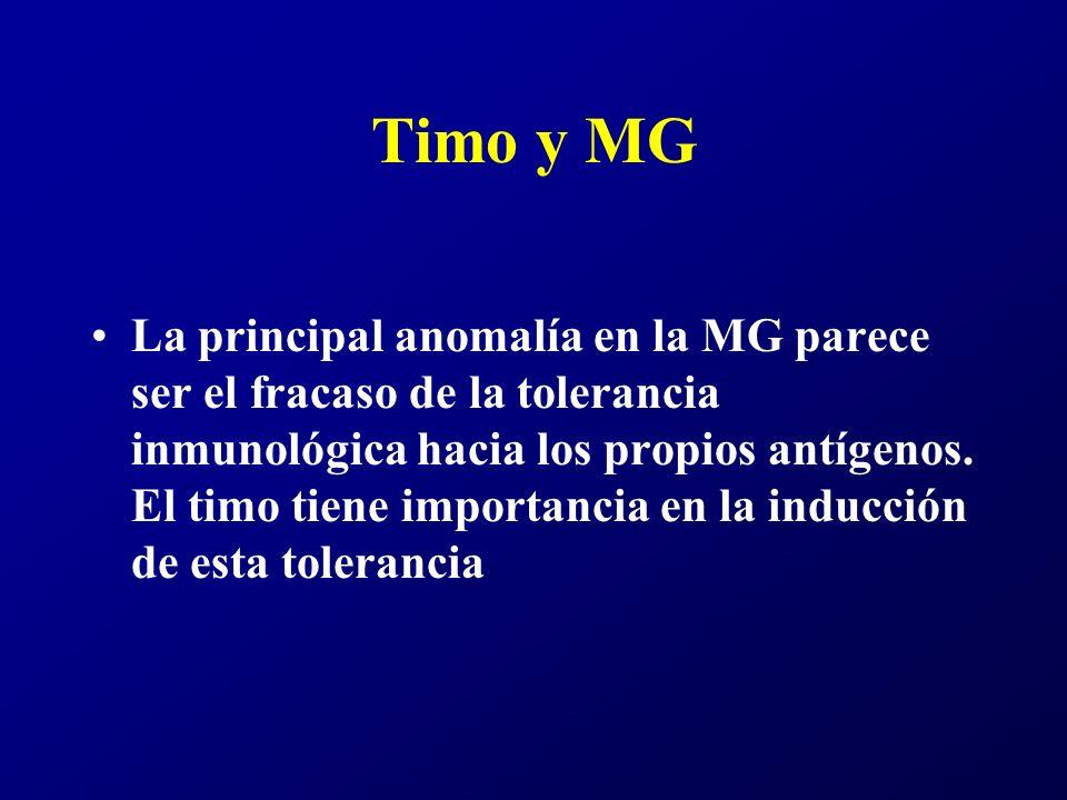 Timo y MG