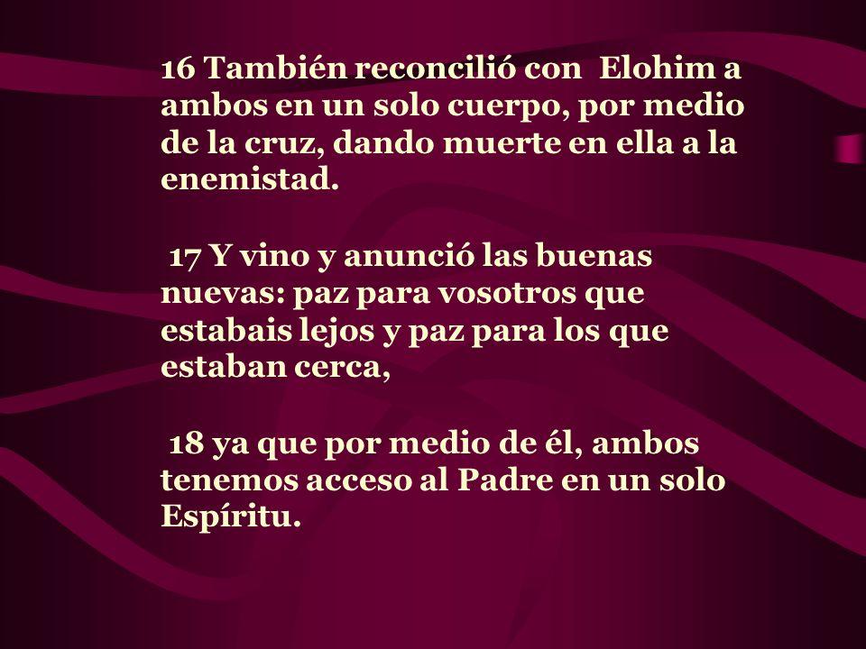 16 También reconcilió con Elohim a ambos en un solo cuerpo, por medio de la cruz, dando muerte en ella a la enemistad.