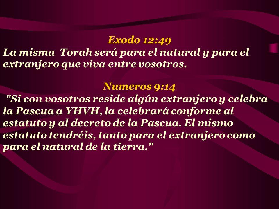 Exodo 12:49 La misma Torah será para el natural y para el extranjero que viva entre vosotros. Numeros 9:14.