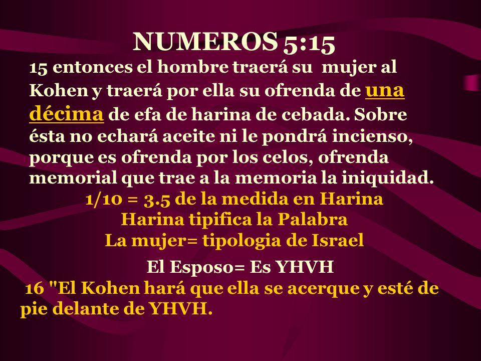 NUMEROS 5:15