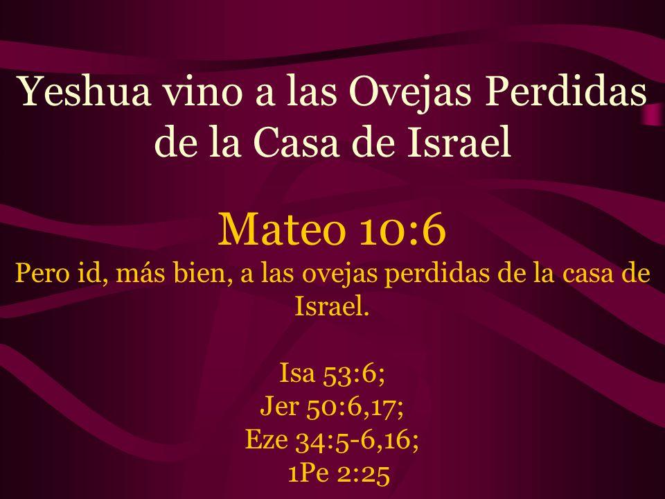 Mateo 10:6 Yeshua vino a las Ovejas Perdidas de la Casa de Israel