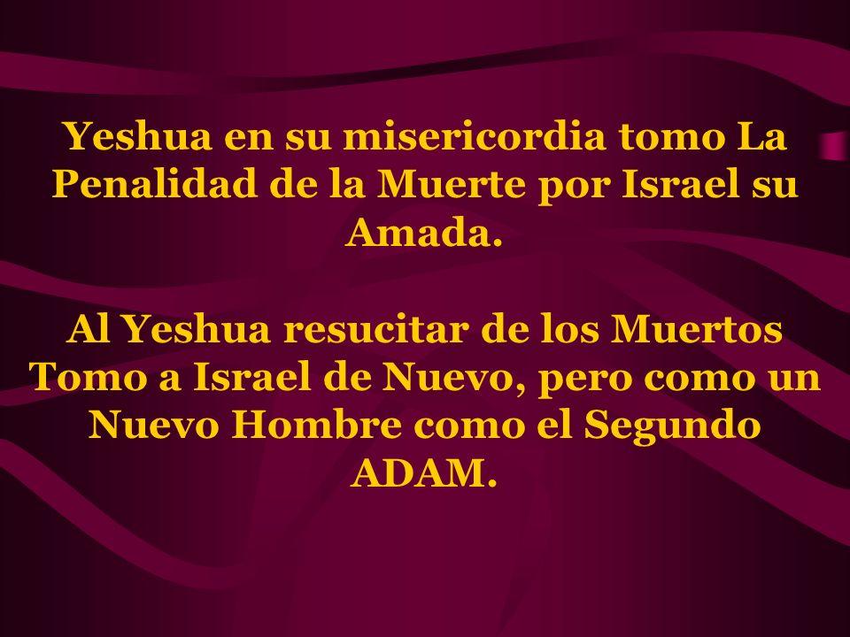 Yeshua en su misericordia tomo La Penalidad de la Muerte por Israel su Amada.
