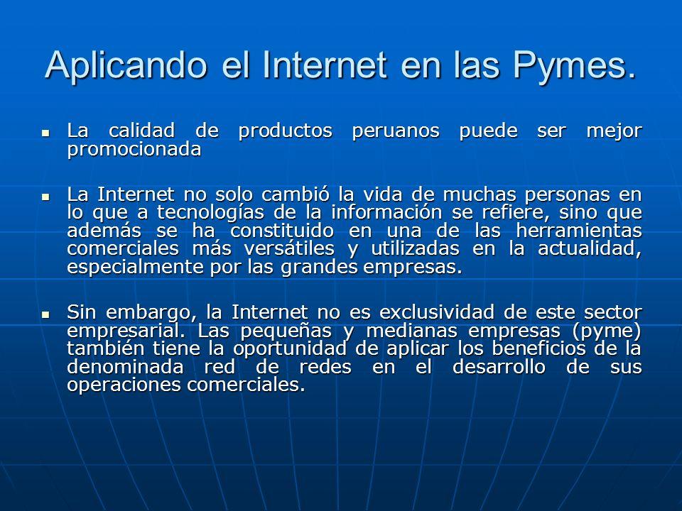 Aplicando el Internet en las Pymes.