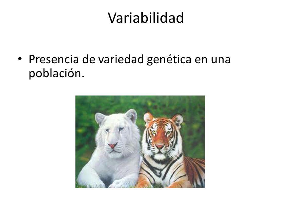 Variabilidad Presencia de variedad genética en una población.