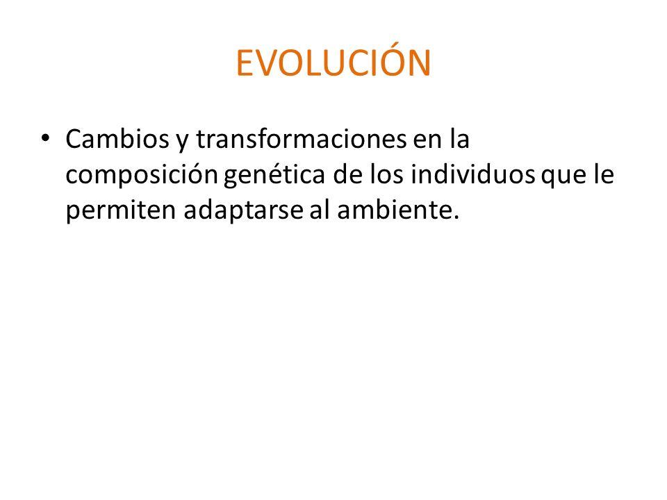EVOLUCIÓNCambios y transformaciones en la composición genética de los individuos que le permiten adaptarse al ambiente.