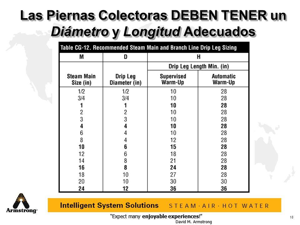 Las Piernas Colectoras DEBEN TENER un Diámetro y Longitud Adecuados